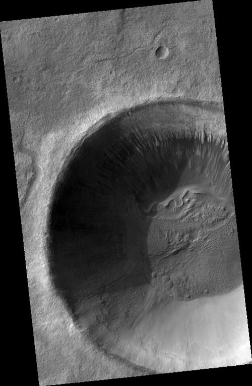 terra-sirenum1.jpg