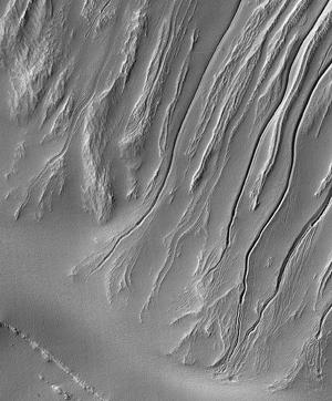 terra-sirenum2.jpg